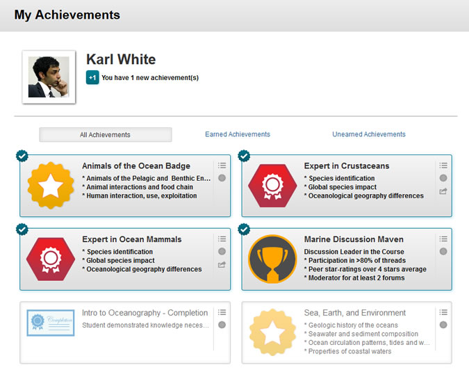 screenshot of achievements