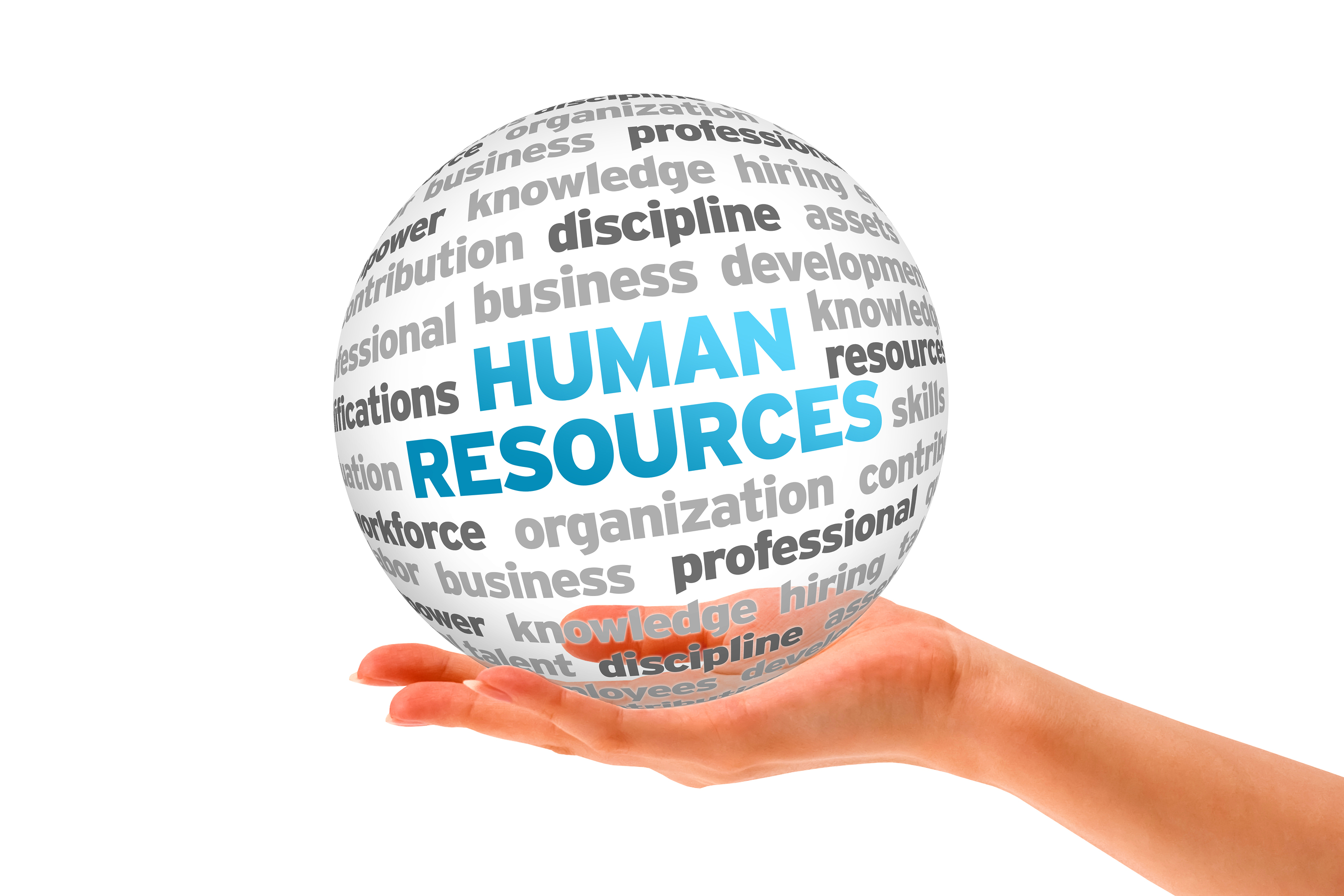 Human Resources city college of ny subjects